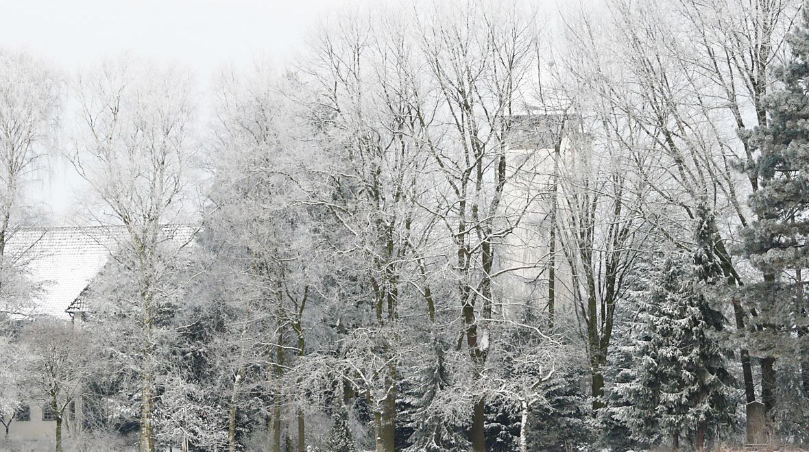 Klostergarten im Winter